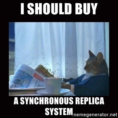 i should buy a boat cat - I should buy A Synchronous Replica System