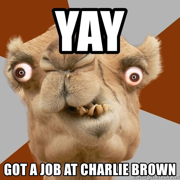 Crazy Camel lol - YAY GOT A JOB AT CHARLIE BROWN