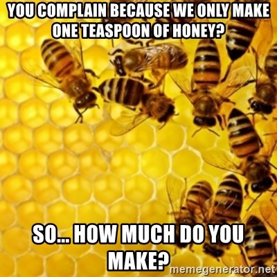 Honeybees - YOU COMPLAIN BECAUSE WE ONLY MAKE ONE TEASPOON OF HONEY? SO... HOW MUCH DO YOU MAKE?