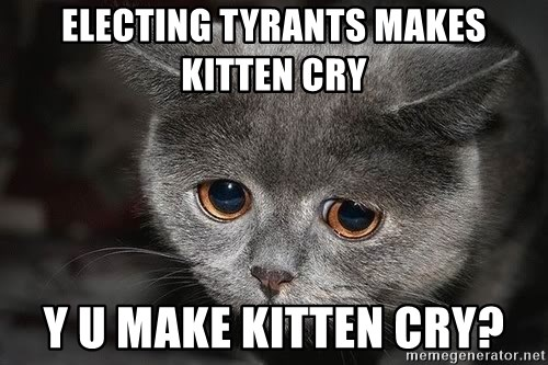 Sadcat - electing tyrants makes kitten cry y u make kitten cry?