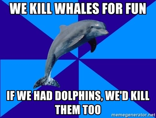 Drama Dolphin - We kill whales for fun If we had dolphins, we'd kill them too