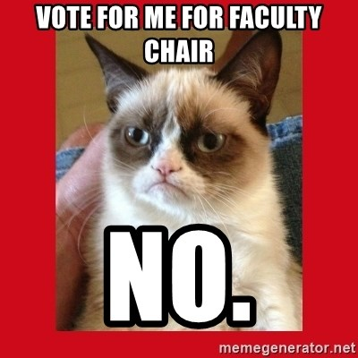 No cat - Vote for me for faculty chair no.