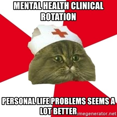 Nursing Student Cat - Mental health clinical rotation  Personal life problems seems a lot better