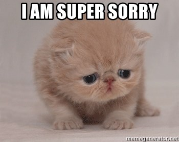 Super Sad Cat - I AM SUPER SORRY
