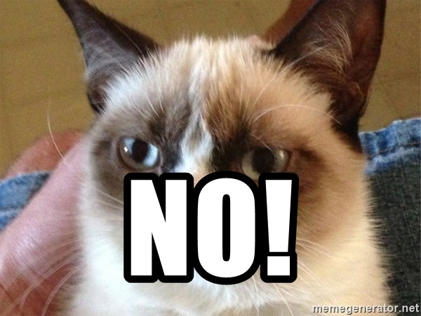 Angry Cat Meme -  NO!