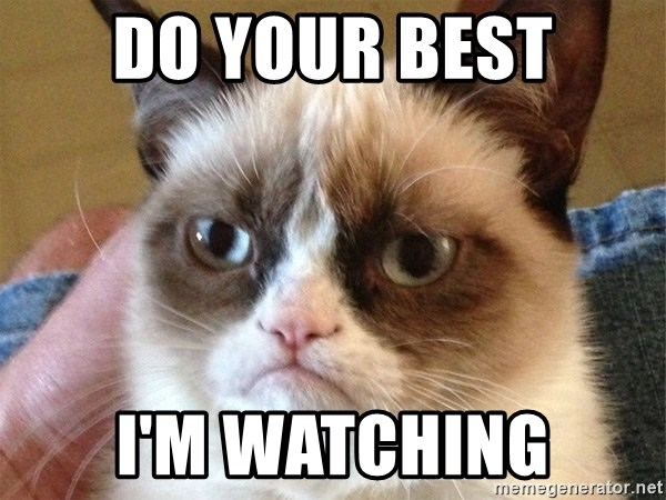 Angry Cat Meme - Do your best I'm watching
