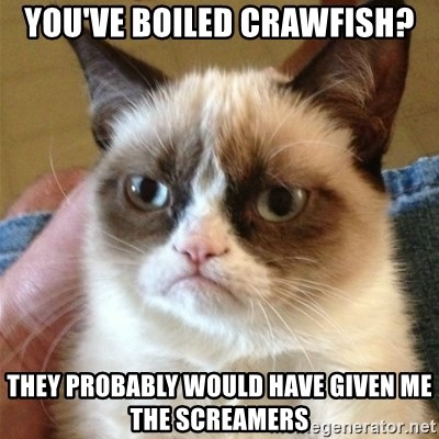 Grumpy Cat  - You've boiled crawfish? they probably would have given me the screamers
