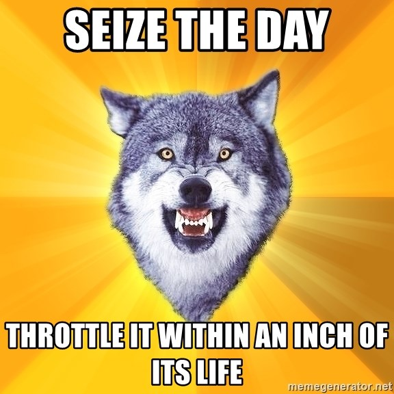 Courage Wolf - SEIZE THE DAY THROTTLE IT WITHIN AN INCH OF ITS LIFE