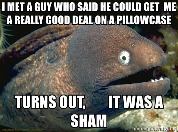 eel - I met a guy who Said he could get  me a really good deal on a pillowcase Turns out,        iT was a sHam