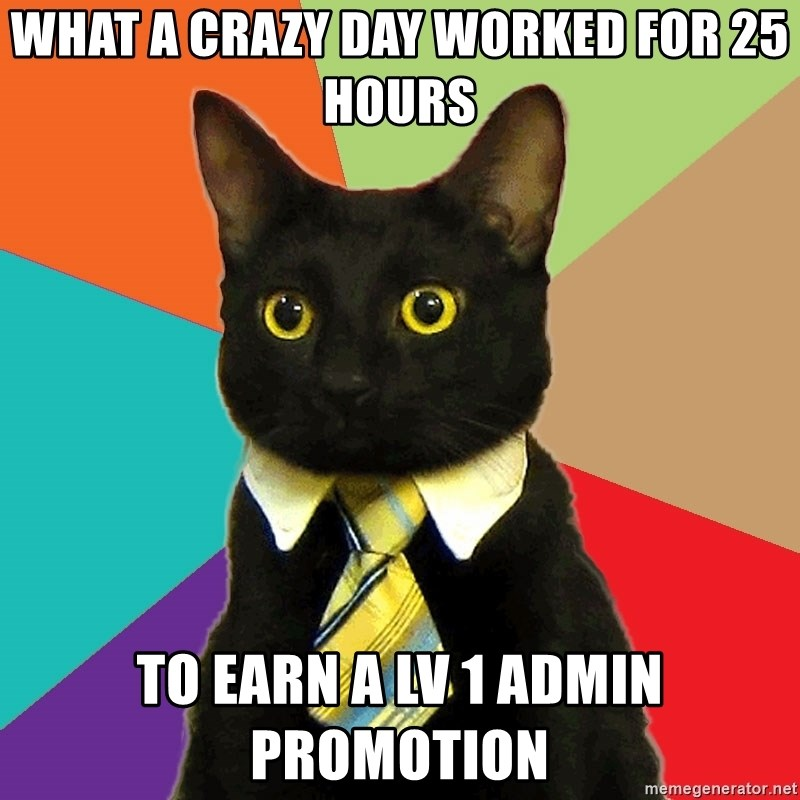 Business Cat - what a crazy day worked for 25 hours to earn a lv 1 admin promotion