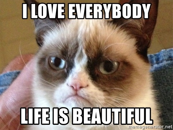 Angry Cat Meme - i love everybody life is beautiful