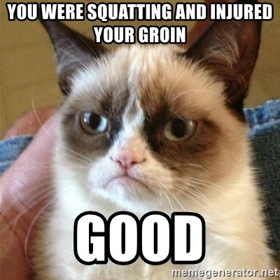 Grumpy Cat  - you were squatting and injured your groin good