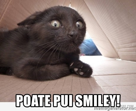 Paranoid cat -  poate pui smiley!