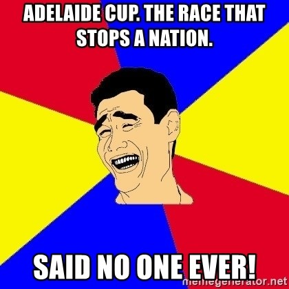 journalist - adelaide cup. the race that stops a nation. said no one ever!