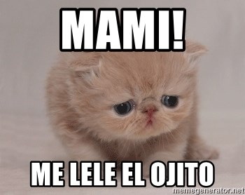 Super Sad Cat - MAMI!  ME LELE EL OJITO