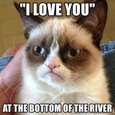 "Grumpy Cat  - ""i love you"" at the bottom of the river"