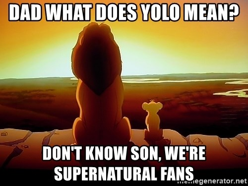 simba mufasa - DAD WHAT DOES YOLO MEAN? DON't KNOW SON, WE'RE SUPERNATURAL FANS
