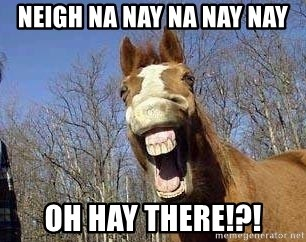 Horse - neigh na nay na nay nay oh hay there!?!