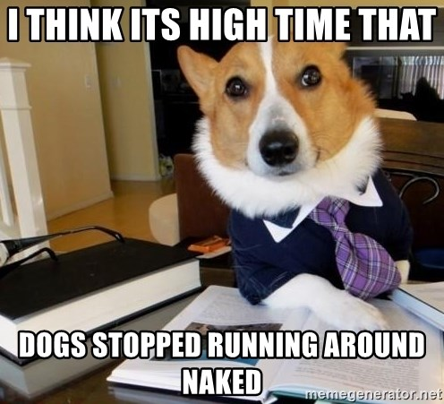 Dog Lawyer - I think its high time that  dogs stopped running around naked