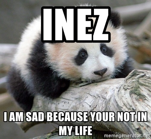 sad panda - INEz I am sad because your not in my life