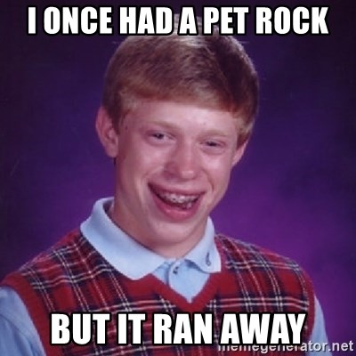 Bad Luck Brian - I ONCE HAD A PET ROCK BUT IT RAN AWAY