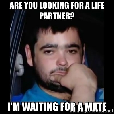 just waiting for a mate - ARE YOU LOOKING FOR A LIFE PARTNER? I'M WAITING FOR A MATE