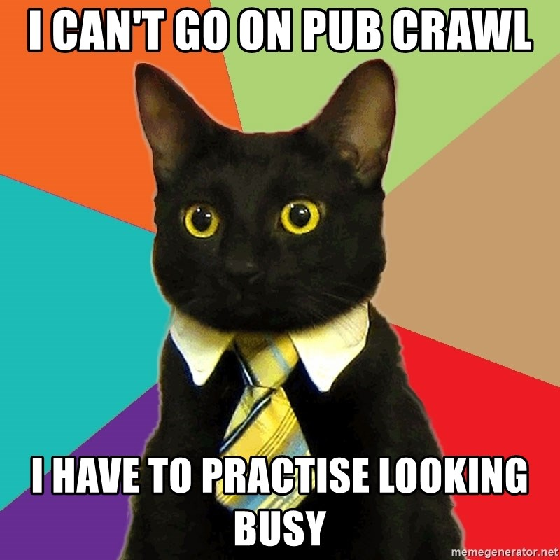 Business Cat - I can't go on pub crawl I have to practise looking busy