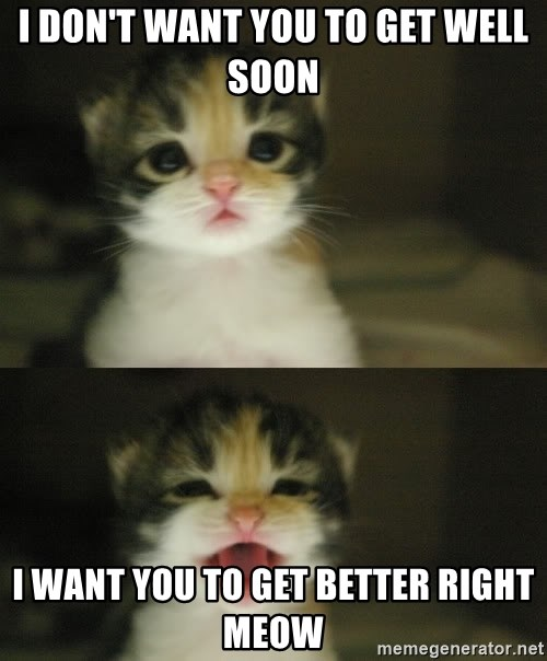 Adorable Kitten - I don't want you to get well soon I want you to get better right meow