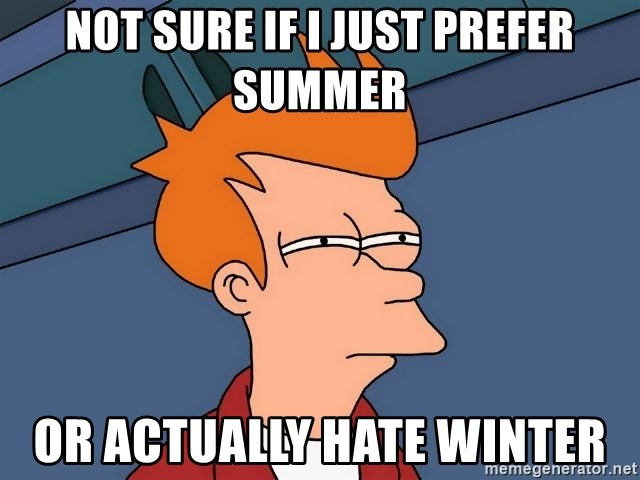 Futurama Fry - NOT SURE IF I JUST PREFER SUMMER OR ACTUALLY HATE WINTER
