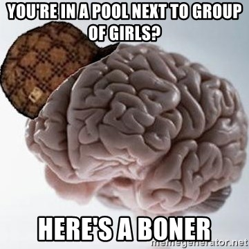 Scumbag Brain - you're in a pool next to group of girls? here's a boner