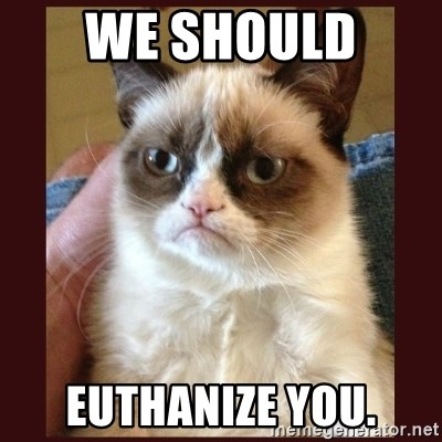Tard the Grumpy Cat - We should  Euthanize you.