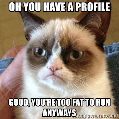 Grumpy Cat  - oh you have a profile good, you're too fat to run anyways