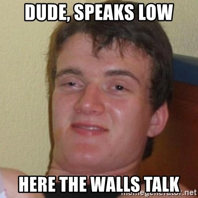 Really Stoned Guy - dude, speaks low here the walls talk