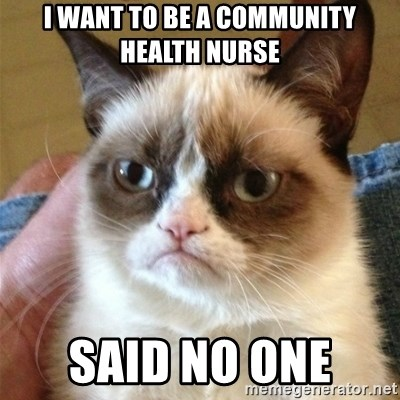 Grumpy Cat  - I want to be a community health nurse Said no one