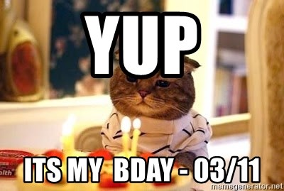 Birthday Cat - Yup Its my  Bday - 03/11