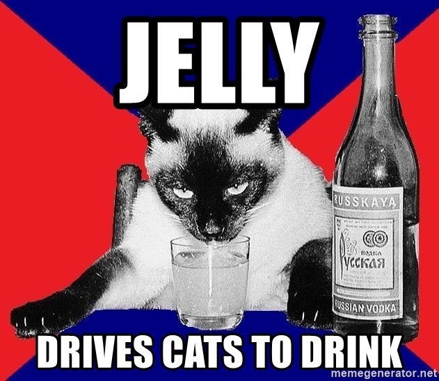 Alco-cat - jelly drives cats to drink