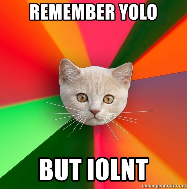 Advice Cat - remember yolo but iolnt