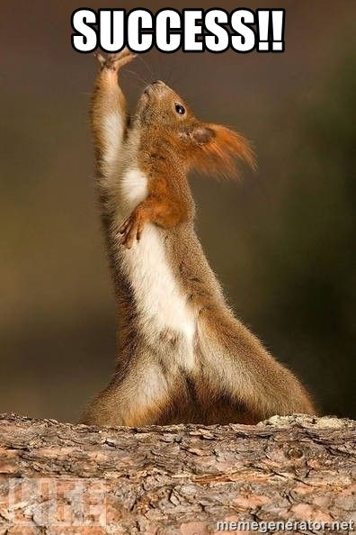 dramatic squirrel - Success!!