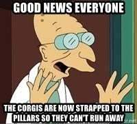 Professor Farnsworth - good news everyone the corgis are now strapped to the pillars so they can't run away