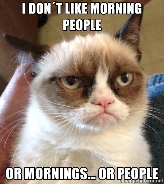 Grumpy Cat 2 - I don´t like morning people or mornings... or people
