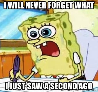 Spongebob What I Learned In Boating School Is - I WILL NEVER FORGET WHAT  I JUST SAW A SECOND AGO