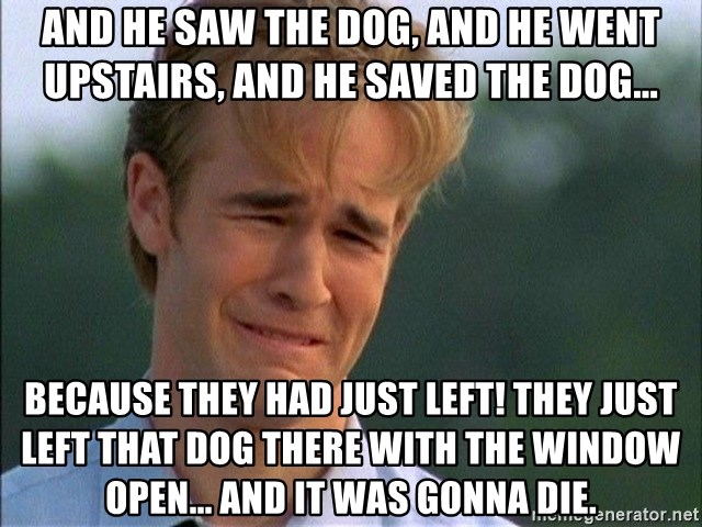 Crying Man - And he saw the dog, and he went upstairs, and he saved the dog... because they had just left! They just left that dog there with the window open... and it was gonna die.