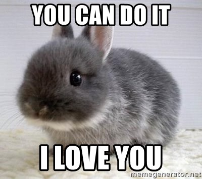 ADHD Bunny - You can do it I love you