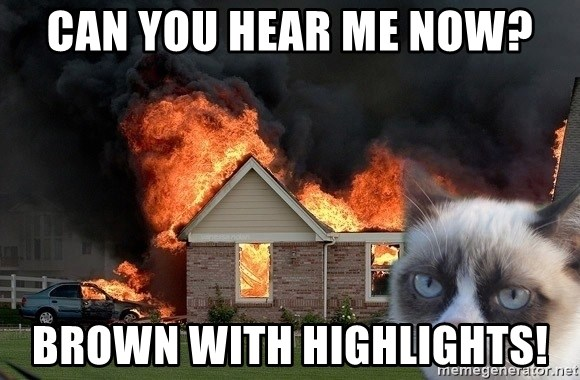 grumpy cat 8 - can you hear me now? brown with highlights!