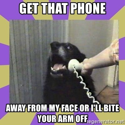 Yes, this is dog! - GET THAT PHONE AWAY FROM MY FACE OR I'LL BITE YOUR ARM OFF