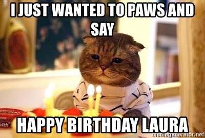 Birthday Cat - I just wanted to paws and say happy birthday Laura