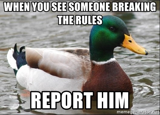 Actual Advice Mallard 1 - WHEN YOU SEE SOMEONE BREAKING THE RULES REPORT HIM