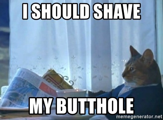 newspaper cat realization - I SHOULD SHAVE  MY BUTTHOLE