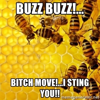 Honeybees - BUZZ BUZZ!... BITCH MOVE!...I STING YOU!!