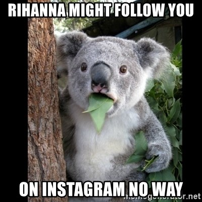 Koala can't believe it - RIHANNA MIGHT FOLLOW YOU ON INSTAGRAM NO WAY